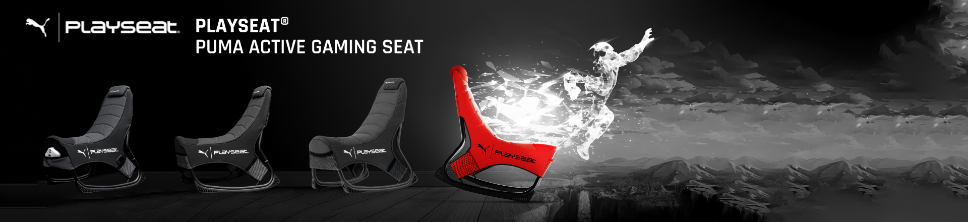 puma-playseat-banner.jpg